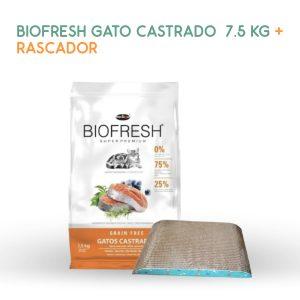 biofresh-gato-castrado