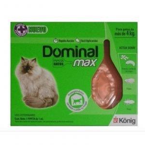 dominal-max-gato