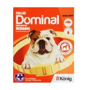 dominal-perro-naranja
