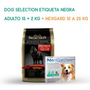 dog-selection-promo-octubre