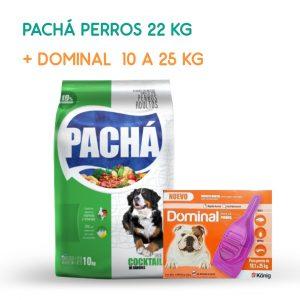 pacha-promo-octubre
