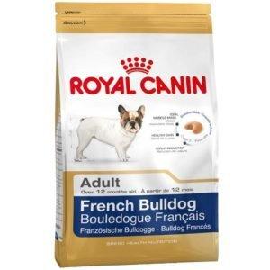 royal-bulldog-frances-alimento-perros
