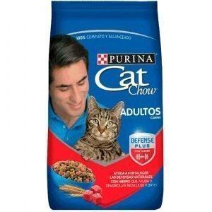 cat-chow-carne-gatos