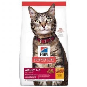 hills-adult-diet