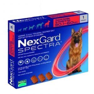 nexgard-perros