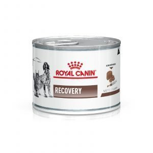 royal-recovery-lata