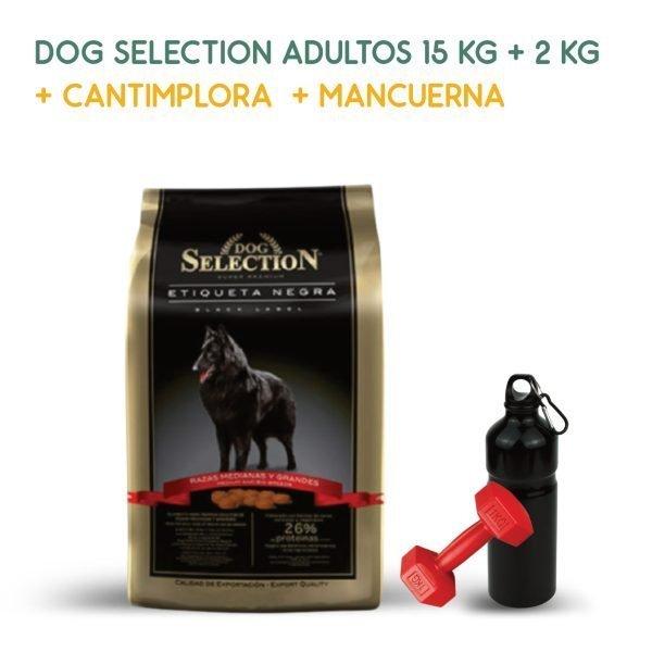 promo-septiembre-dog-selection